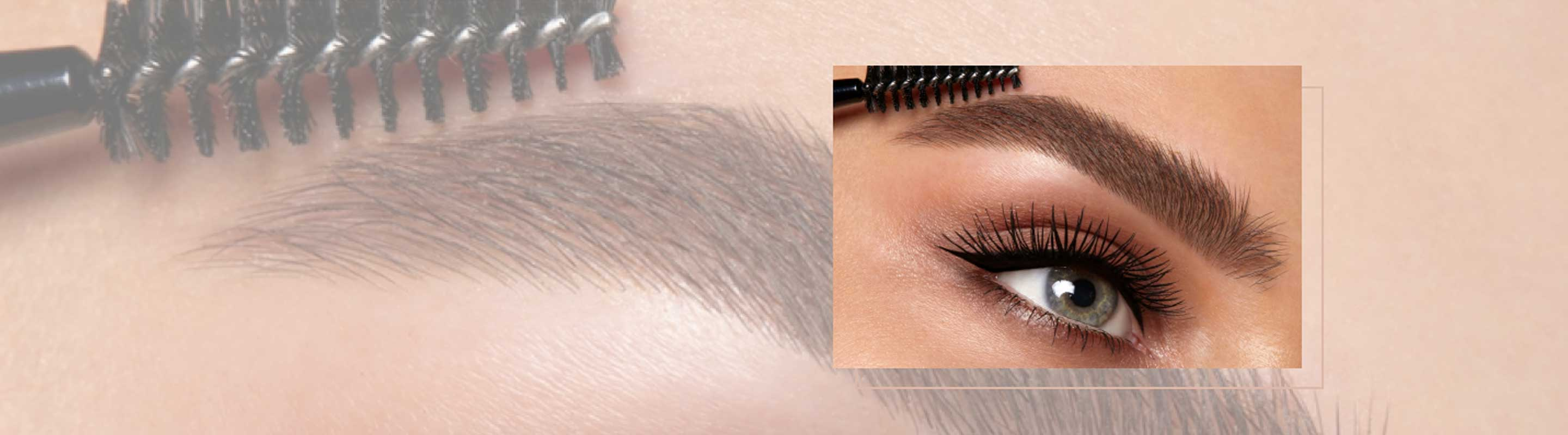 Brushed Up Eyebrows How To Official Hd Brows