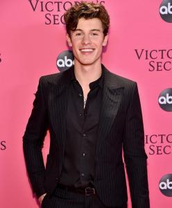 Shawn Mendes at Victoria's Secret Show 2018
