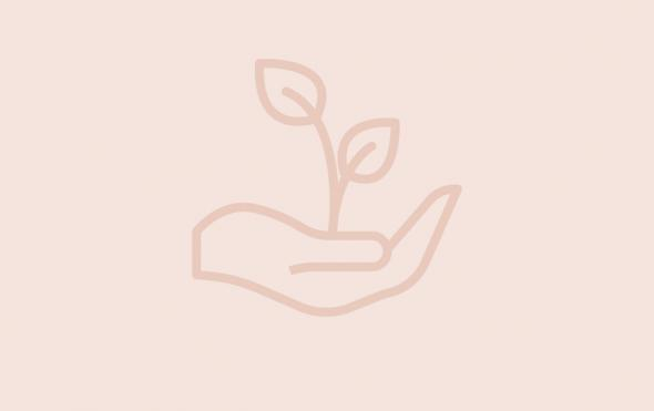Icon of hand holding a plant